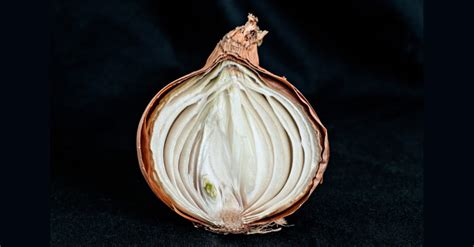 Onion Links